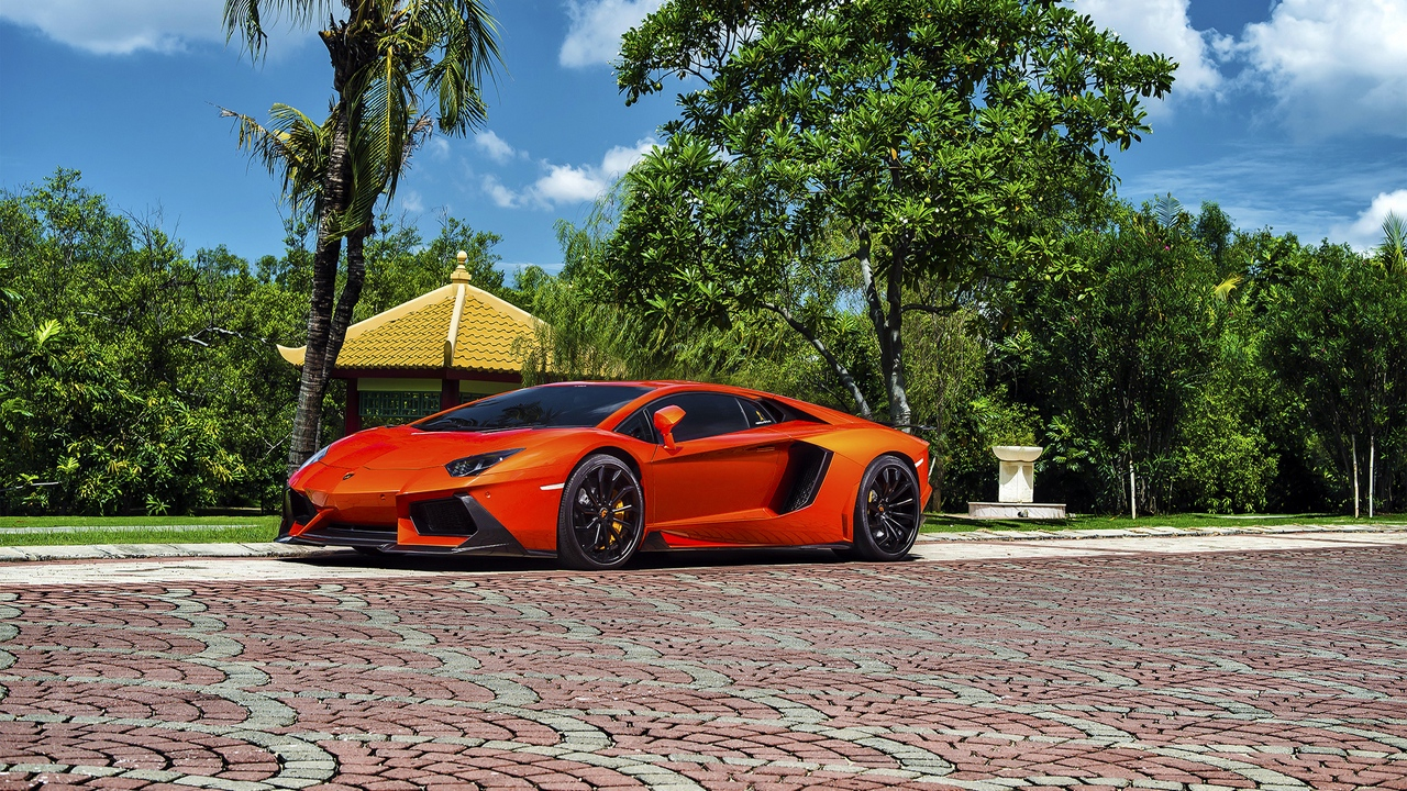 lamborghini, aventador-v, lp 740-4, red, side view