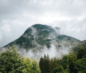 mountains, fog, forest, trees