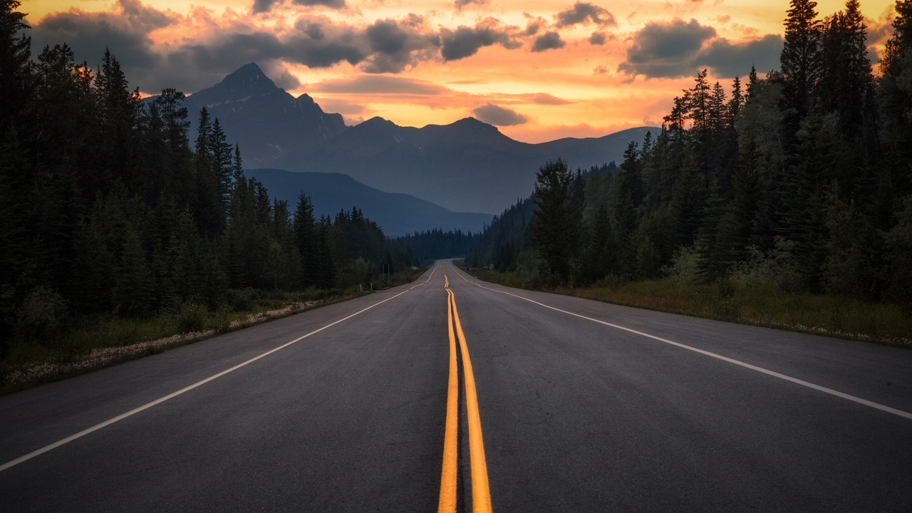 road, asphalt, marking, mountains, trees, turn, jasper, canada
