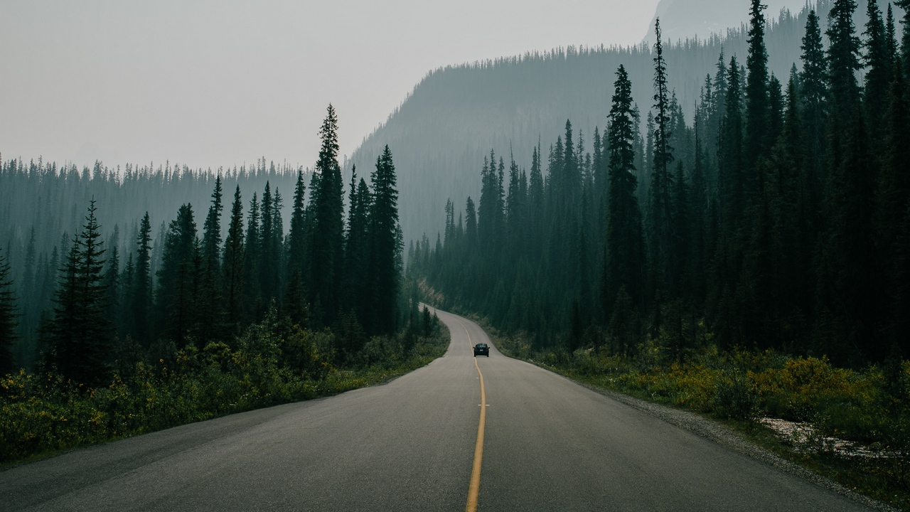road, marking, fog, mountains, movement